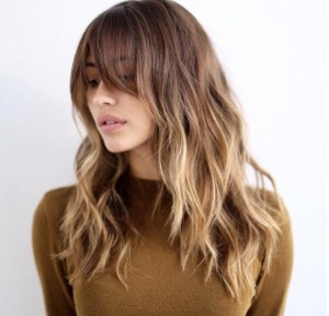 3af515319781c4d1ac91a5d0401ee6fe--honey-highlights-bangs-highlights